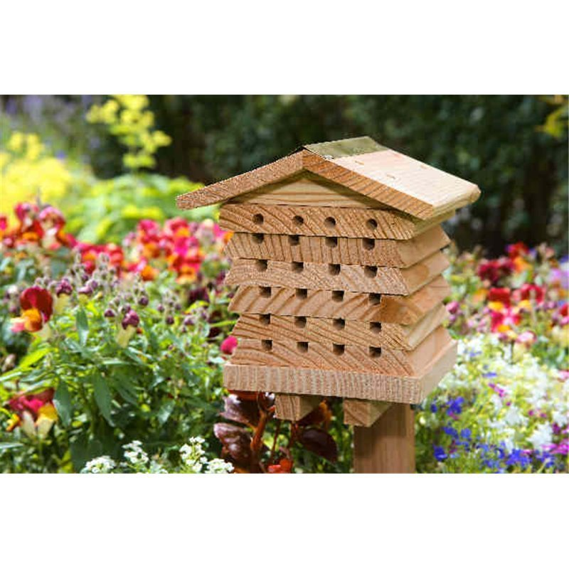 Hôtel à abeilles solitaires (1300.102)
