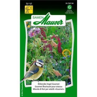 Blühendes Vogel-Gourmet, einjährig (20730704)(Samen)