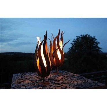Feuerblume «Fiamma»