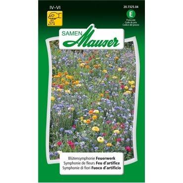 Mélange de fleurs Feu d'artifice (20732504)(Semence)