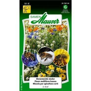 Fleurs mellifères courtes (20738104)