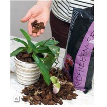 Terreau pour orchidée (7700.460)