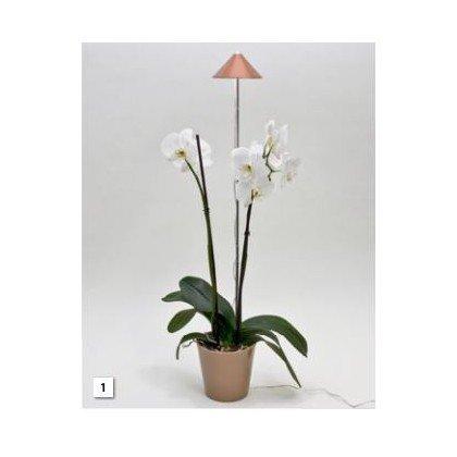 Projecteur pour plantes SUNLiTE