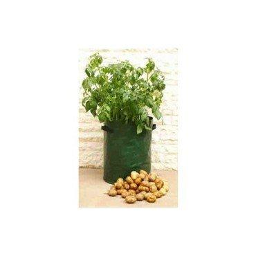 Pot pour culture de pommes de terre (30116301)