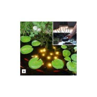 Welkin Pond Light (0880.083)