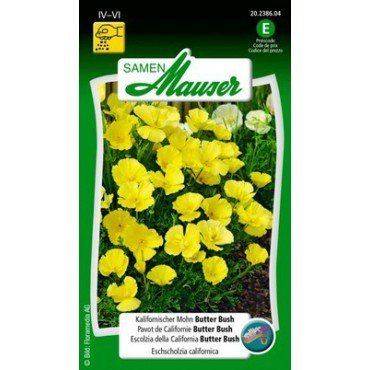 Pavot de Californie Butter Bush (20238604)