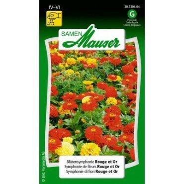 Blütensymphonie Rouge et Or (20730404)(Samen)