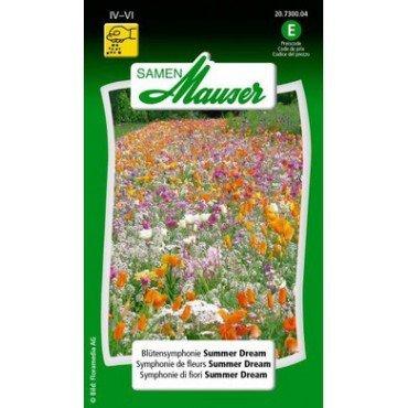 Symphonie de fleurs Summer Dream (20730004)(Semence)