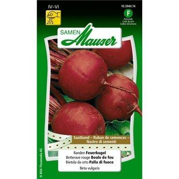 Betterave rouge Boule de feu, ruban à semis 10394074 (semence)